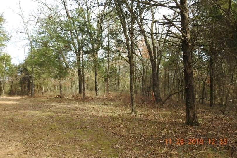 40AC Burchfield Mountain Trail - Photo 1