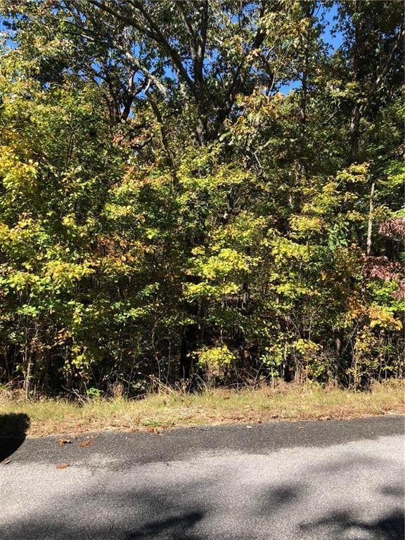 Davington Lane, Bella Vista, AR 72715 (MLS #1164132) :: NWA House Hunters | RE/MAX Real Estate Results