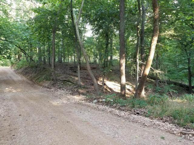 S 595 Loop, Grove, OK 74344 (MLS #1164175) :: McNaughton Real Estate