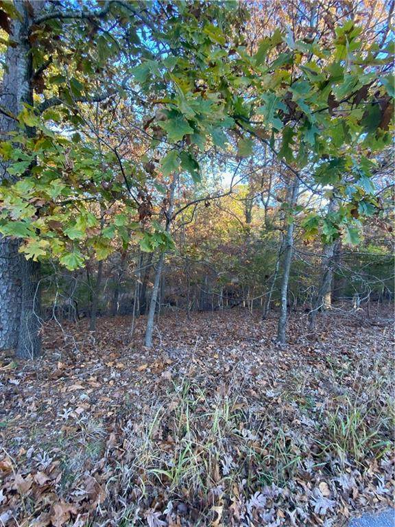 Lot 33, 34 & 35 Acapulco Drive, Rogers, AR 72756 (MLS #1165168) :: Annette Gore Team | EXP Realty