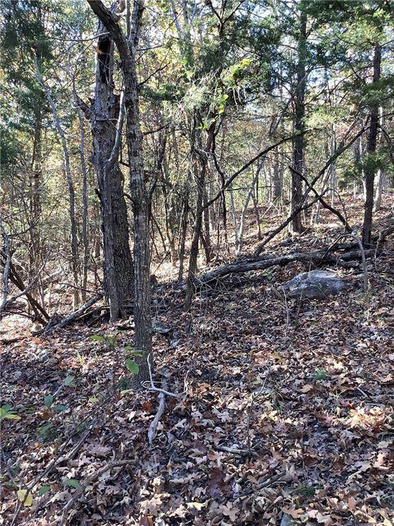 Lot 39 & Lot 40 Dogwood & Maple Drive, Garfield, AR 72732 (MLS #1166282) :: Annette Gore Team | EXP Realty