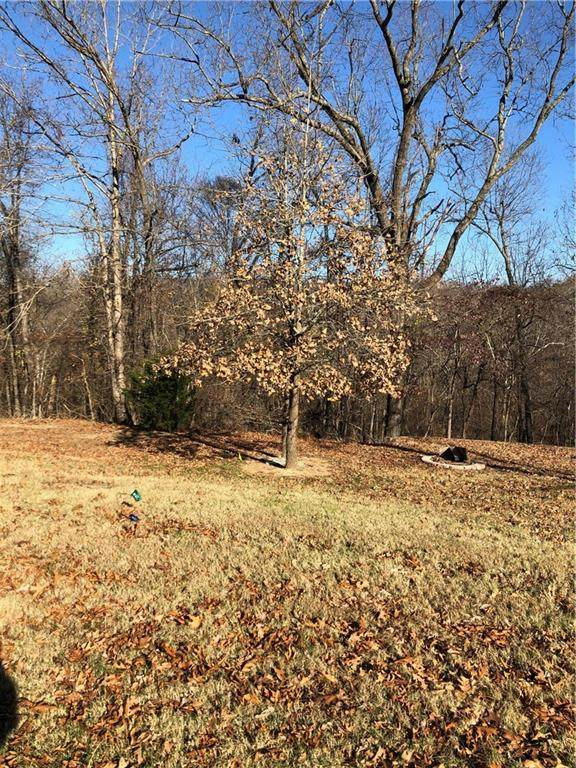 Lot 13 Ironwood Court, Rogers, AR 72756 (MLS #1167123) :: Annette Gore Team | RE/MAX Real Estate Results