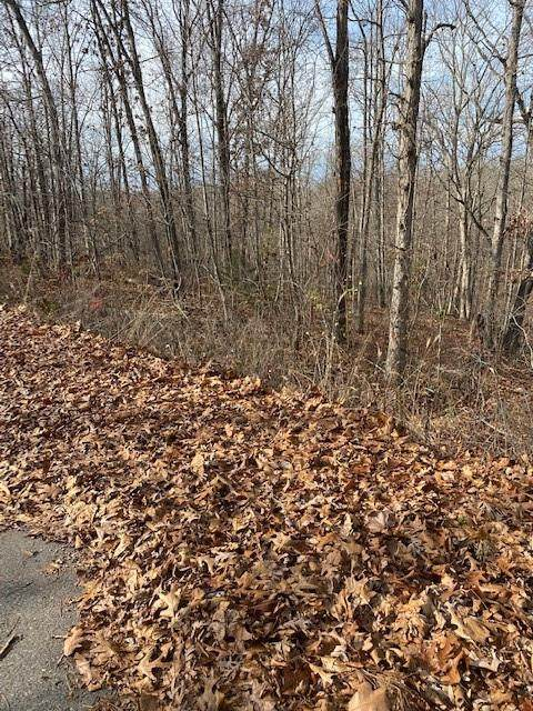 0 Letchworth (Lot 1) Drive, Bella Vista, AR 72714 (MLS #1167344) :: McNaughton Real Estate