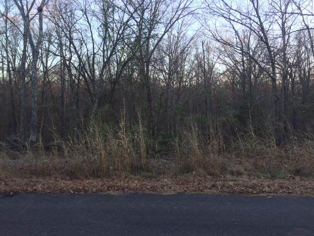 Ledbetter Lane, Bella Vista, AR 72715 (MLS #1168111) :: Five Doors Network Northwest Arkansas