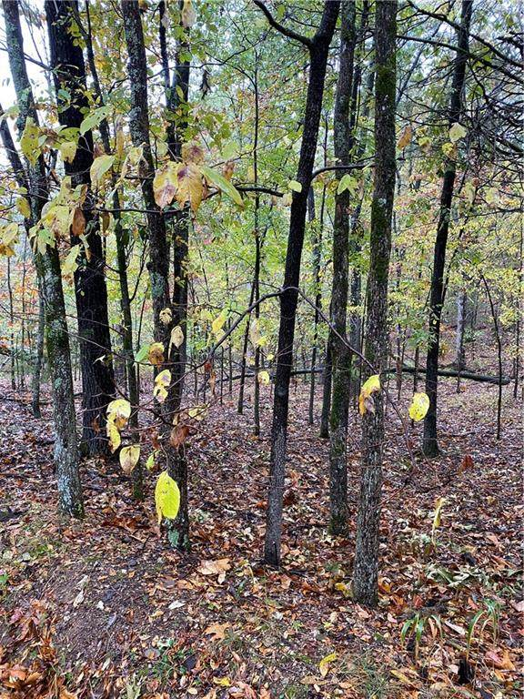 Lot 26 Canary, Rogers, AR 72756 (MLS #1169340) :: Five Doors Network Northwest Arkansas