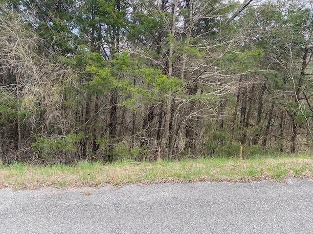 Thunderbird Drive, Holiday Island, AR 72631 (MLS #1179944) :: McNaughton Real Estate