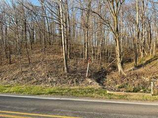 Highway 102, Decatur, AR 72722 (MLS #1180217) :: NWA House Hunters | RE/MAX Real Estate Results