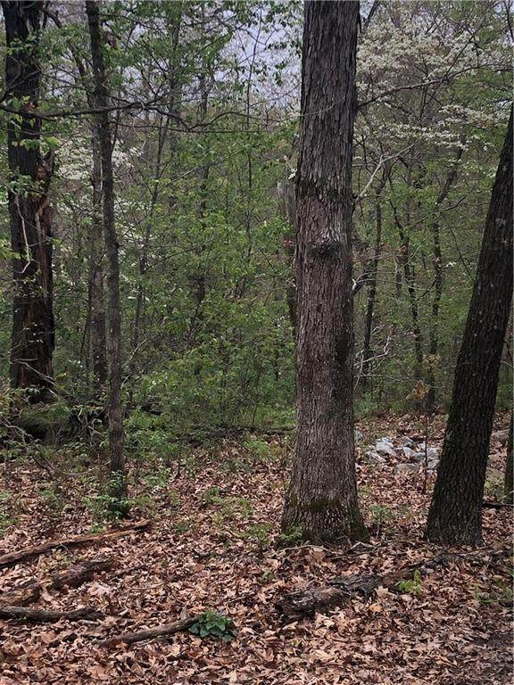 Lot 6&7 Mull Lane, Bella Vista, AR 72715 (MLS #1180536) :: Annette Gore Team | EXP Realty