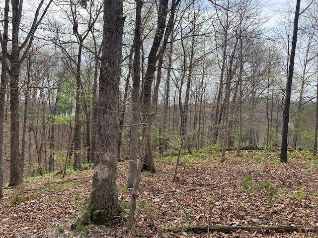 Lot 23 Strichen Drive, Bella Vista, AR 72715 (MLS #1180968) :: Annette Gore Team | EXP Realty
