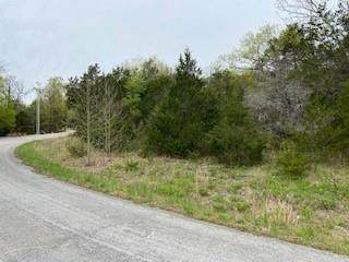 Lot 9, Block 2 Sailboat Drive #116, Holiday Island, AR 72631 (MLS #1181849) :: Annette Gore Team | EXP Realty