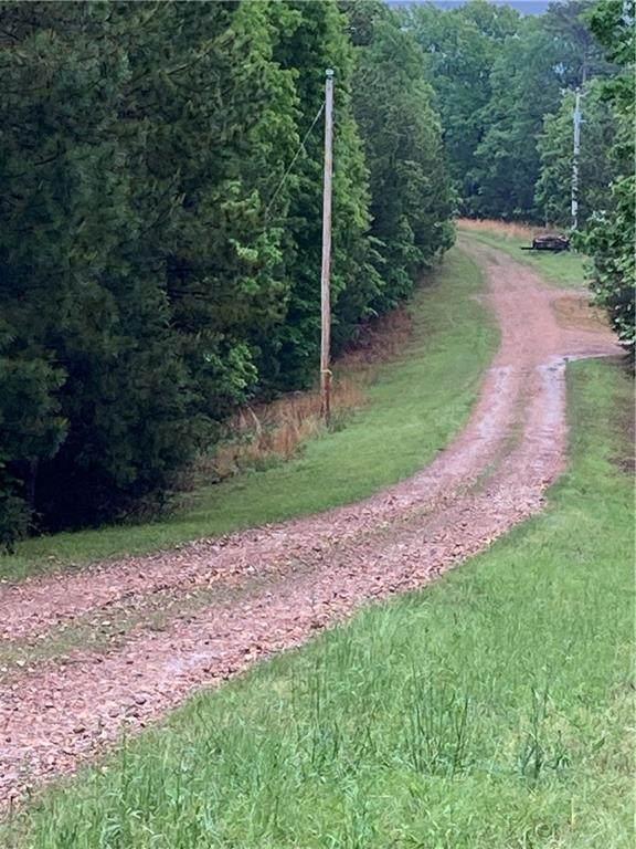 TBD County 1160 Road, Eureka Springs, AR 72631 (MLS #1184597) :: McMullen Realty Group