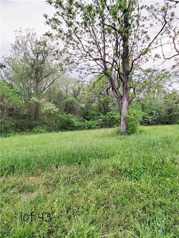 Lot 43 Hopkins Lane, Pea Ridge, AR 72751 (MLS #1184723) :: NWA House Hunters | RE/MAX Real Estate Results
