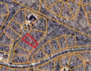 Bayloch Lane, Bella Vista, AR 72715 (MLS #1185145) :: Five Doors Network Northwest Arkansas