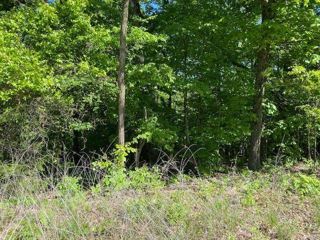 50 Mercury Lane, Holiday Island, AR 72631 (MLS #1185288) :: McMullen Realty Group