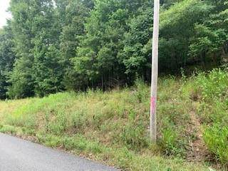 Black Oak Drive, Garfield, AR 72732 (MLS #1193373) :: McMullen Realty Group
