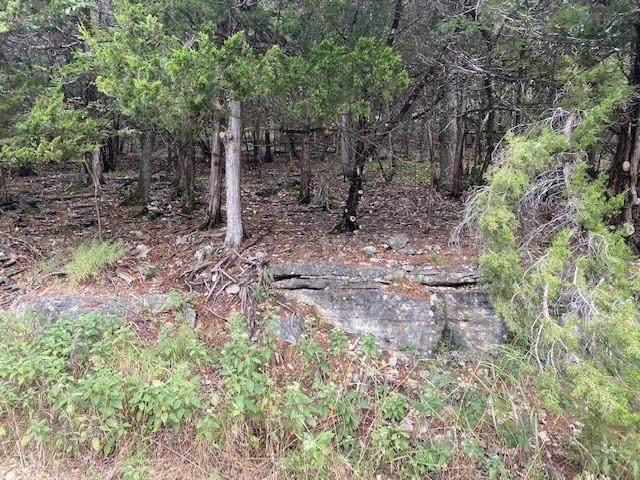 Block 2, Lot 3 Appaloosa Drive #117, Holiday Island, AR 72631 (MLS #1198375) :: NWA House Hunters | RE/MAX Real Estate Results