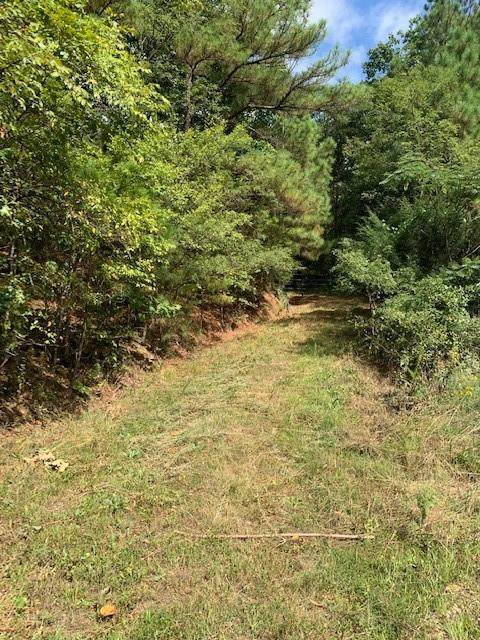 Patton Road, West Fork, AR 72774 (MLS #1198383) :: NWA House Hunters | RE/MAX Real Estate Results