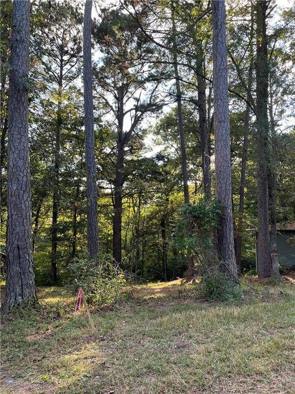 Hickory Drive, Rogers, AR 72756 (MLS #1199330) :: Five Doors Network Northwest Arkansas