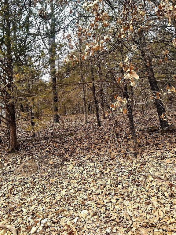 TBD Daisy Lane, Lowell, AR 72745 (MLS #1201199) :: McMullen Realty Group