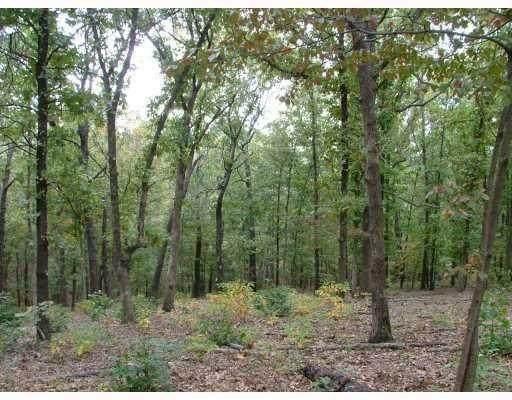 Rothbury Lane, Bella Vista, AR 72714 (MLS #1201219) :: Five Doors Network Northwest Arkansas