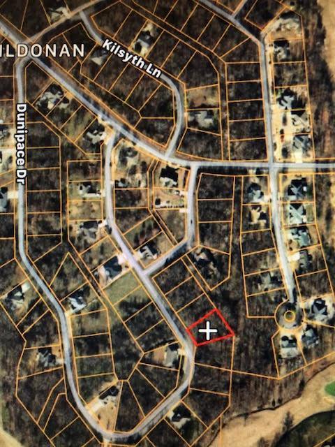 Dunipace Drive, Bella Vista, AR 72715 (MLS #10007459) :: McNaughton Real Estate