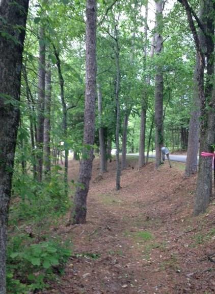 TBD Pivot Rock Road, Eureka Springs, AR 72632 (MLS #1046586) :: McNaughton Real Estate