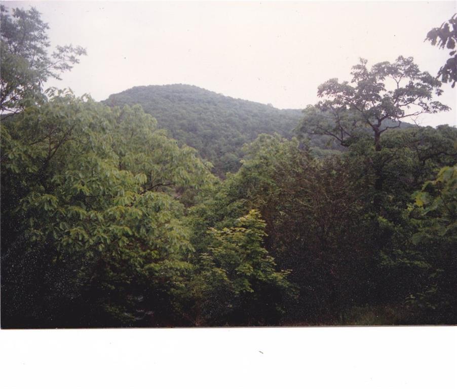 Hwy 221 - Photo 1