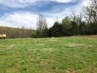 1381 S Spring  Loop, Goshen, AR 72735 (MLS #1110641) :: McNaughton Real Estate