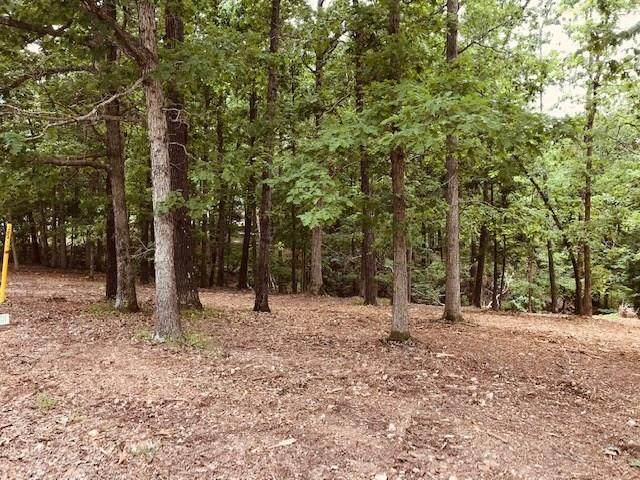 Lot 5 Fairway Drive, Rogers, AR 72756 (MLS #1124438) :: McNaughton Real Estate