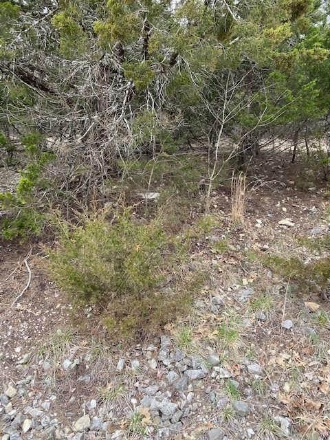 TBD Deer Run Drive, Holiday Island, AR 72631 (MLS #1139754) :: Five Doors Network Northwest Arkansas