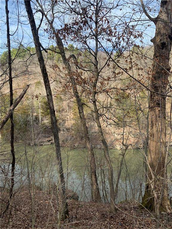 Beech Drive, Lowell, AR 72745 (MLS #1139831) :: McNaughton Real Estate