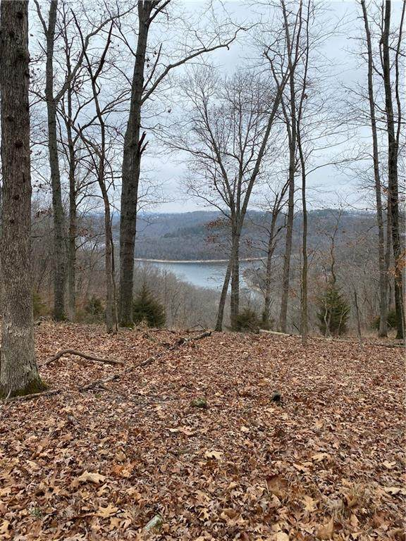 Mundell Road, Eureka Springs, AR 72631 (MLS #1151976) :: NWA House Hunters   RE/MAX Real Estate Results