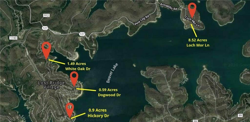 11.50 Acres Loch Mor Lane - Photo 1