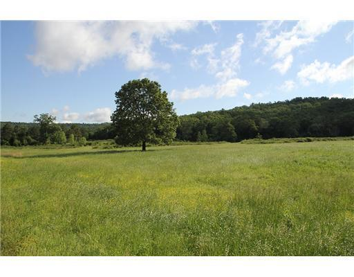 Holt Forge (75 Acres) Road, Altus, AR 72821 (MLS #630106) :: NWA House Hunters | RE/MAX Real Estate Results