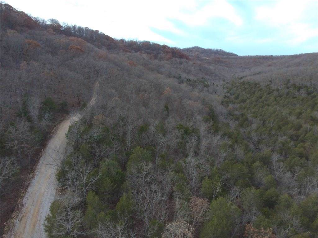 Spider Creek Road - Photo 1