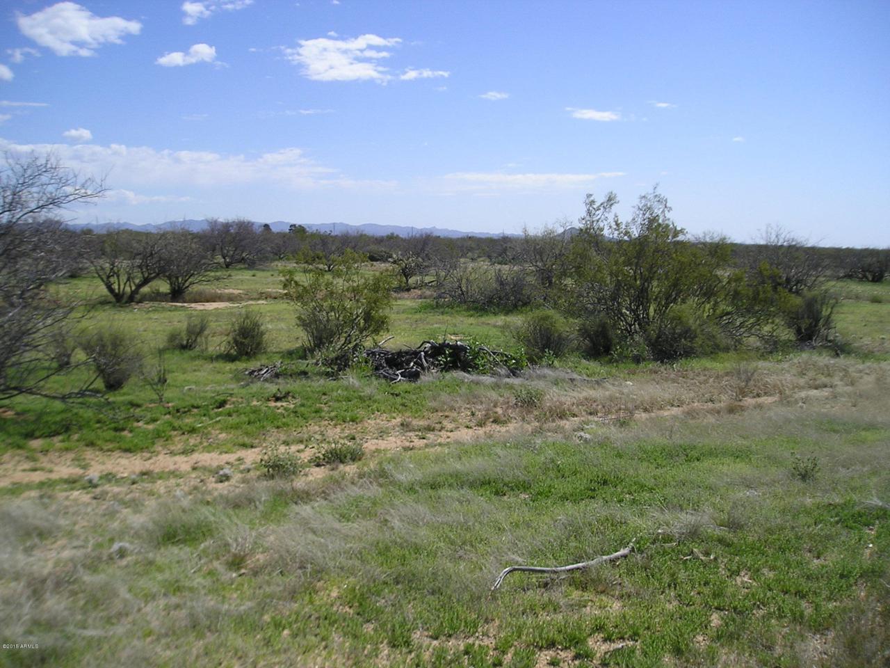 000 Saguaro Hill Trail - Photo 1