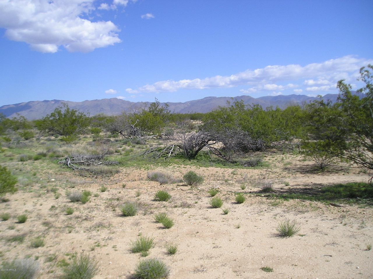000 Saguaro Hill Trail - Photo 1