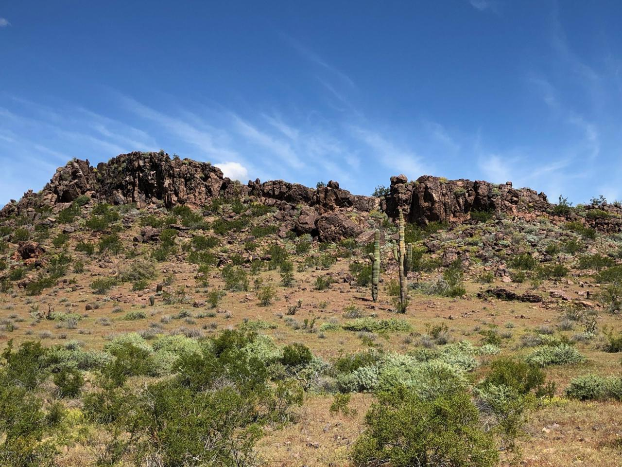 15878 Desert Vista Trail - Photo 1