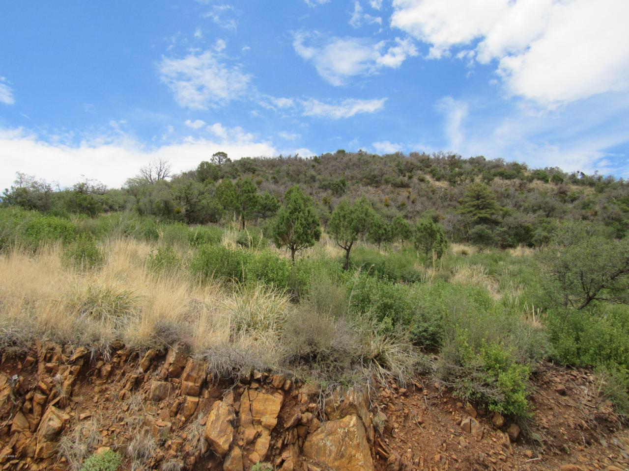 22100 Gladiator Mine Road - Photo 1