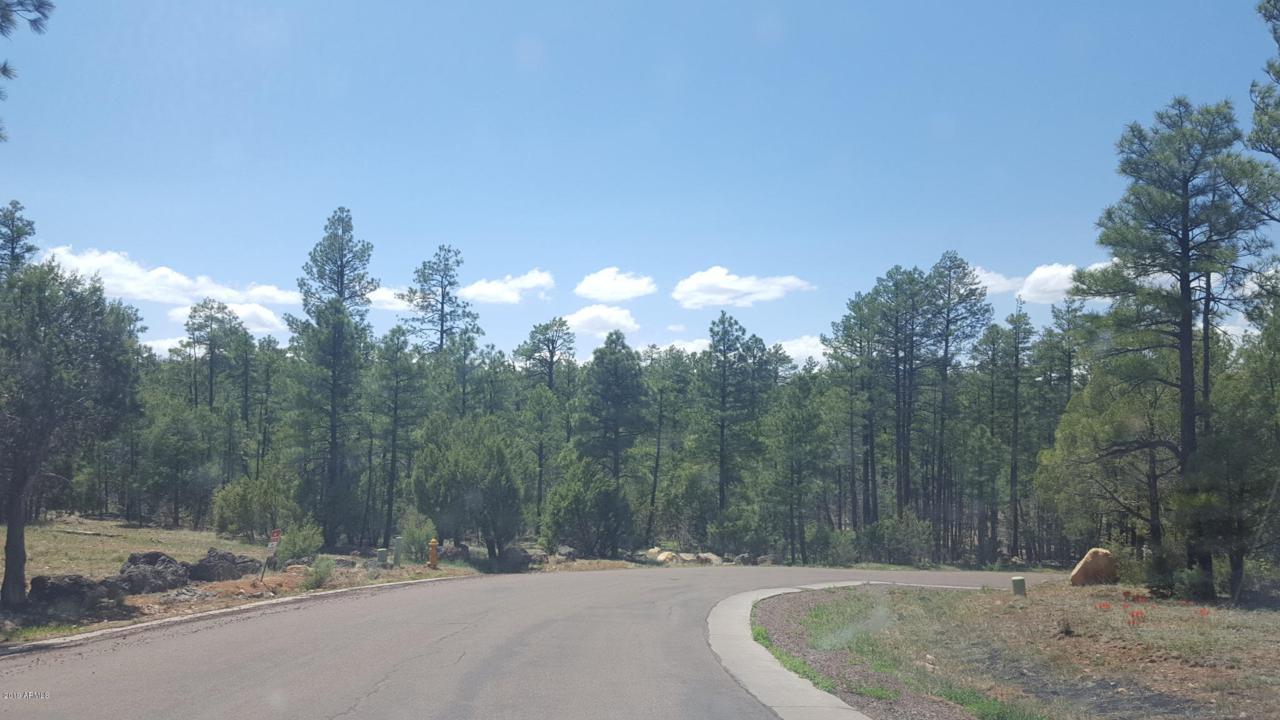 2321 Bristle Cone Drive - Photo 1