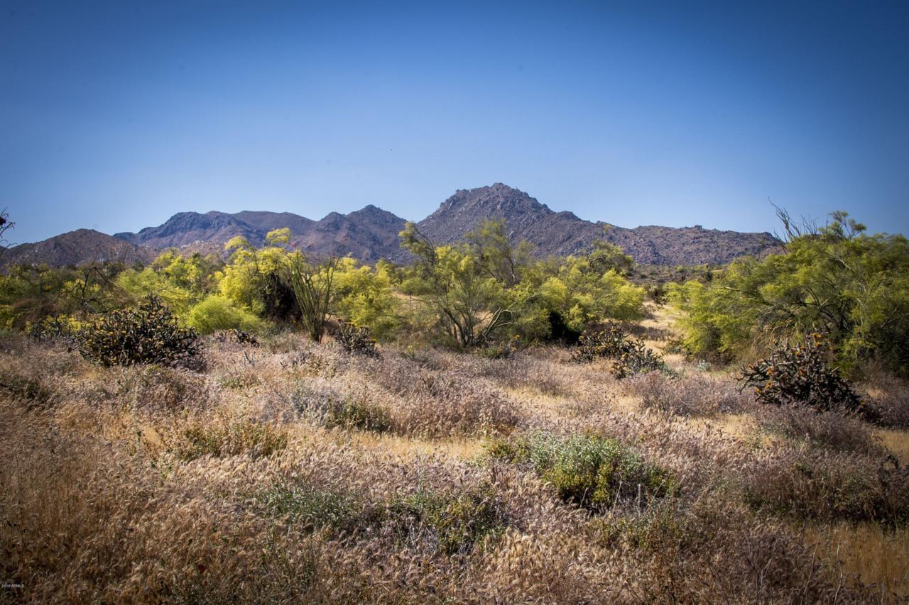 14442 Desert Tortoise Trail - Photo 1