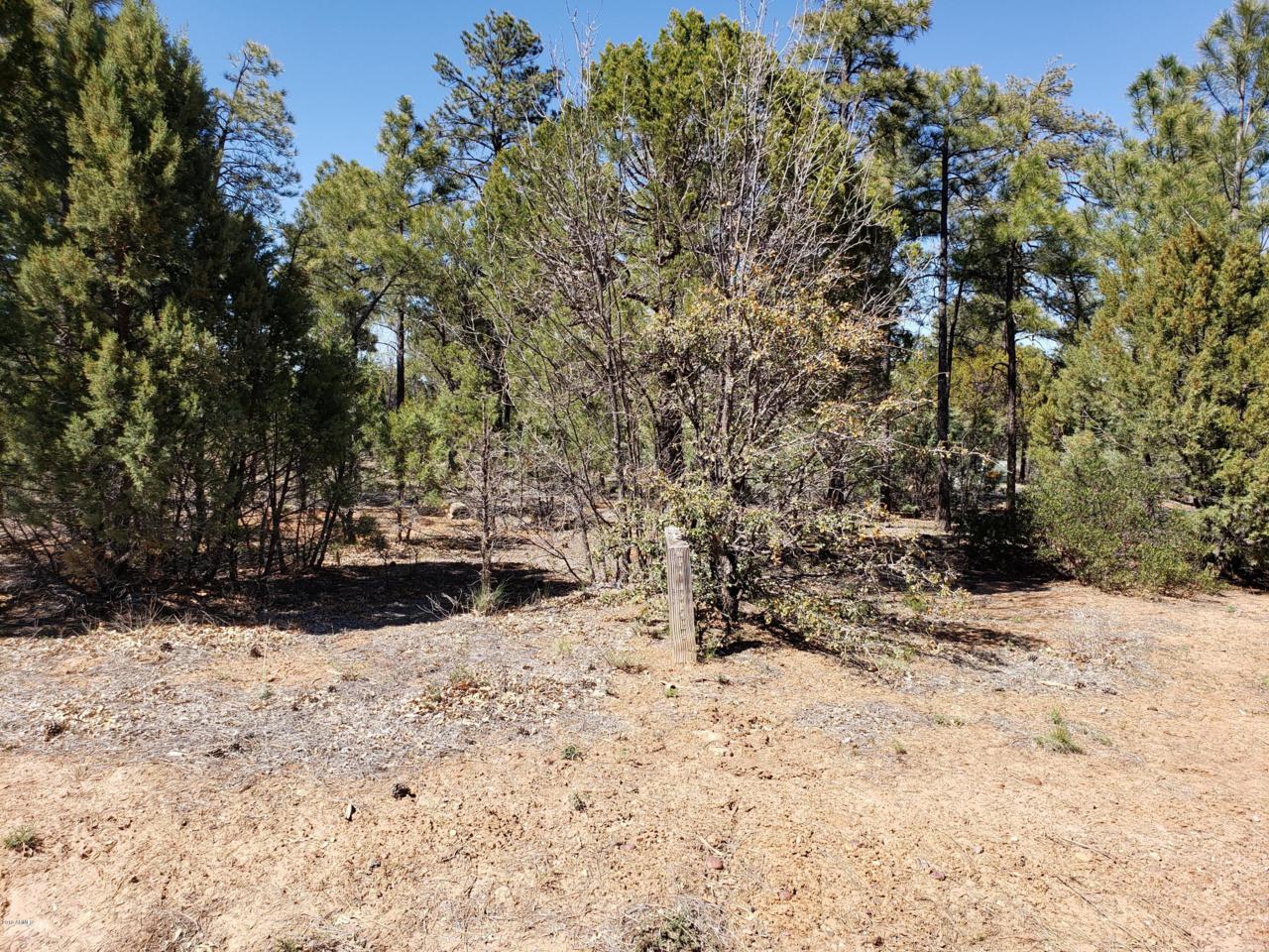 4180 Sugar Pine Loop - Photo 1
