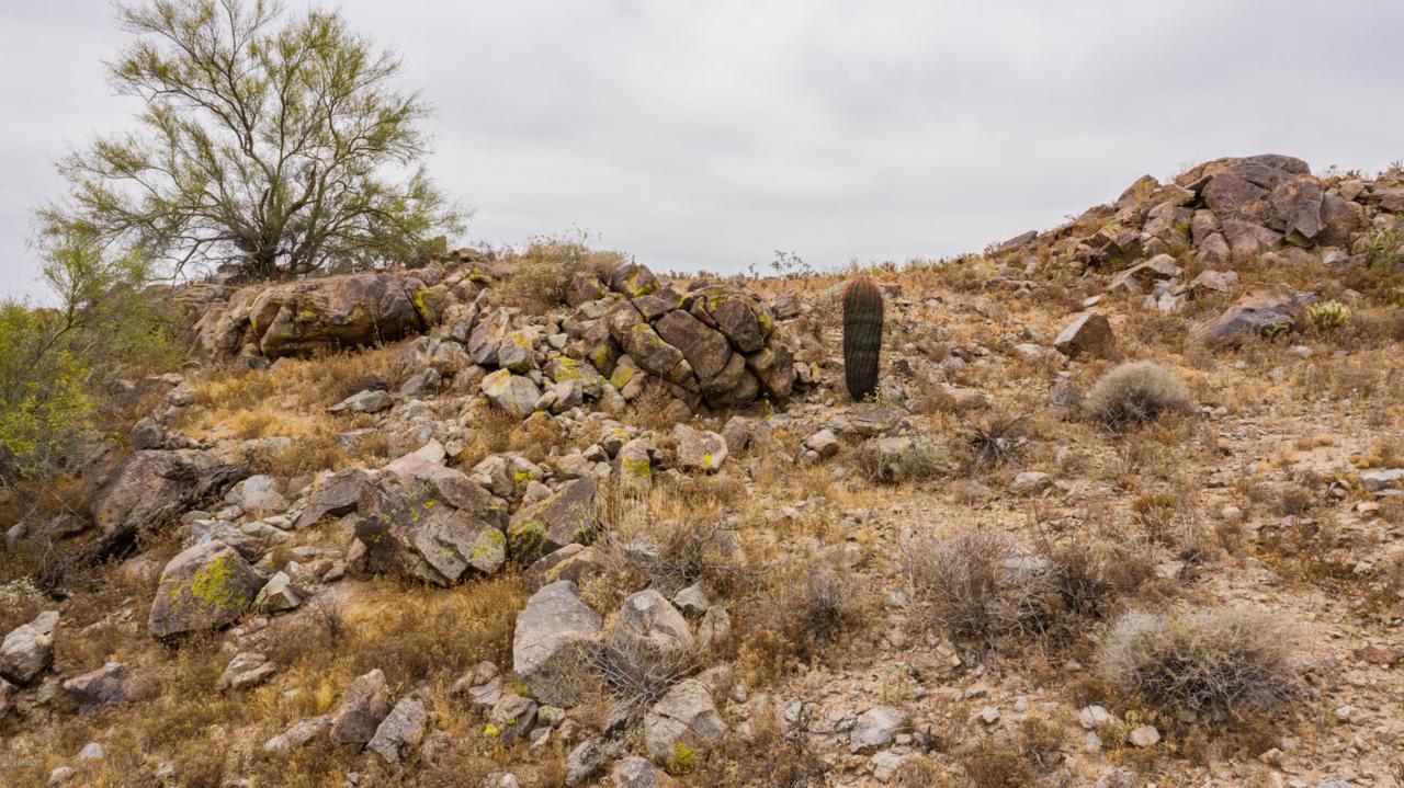 1625 Desert Willow Drive - Photo 1