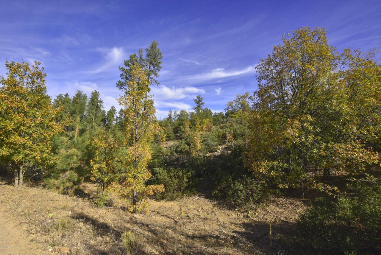 3190 B Tree Tops Trail - Photo 1