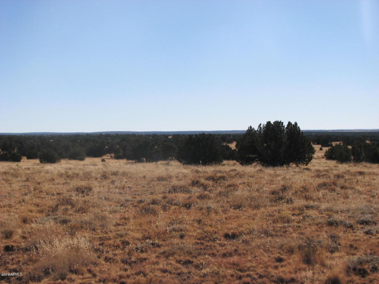 5918 Canyon View Drive - Photo 1