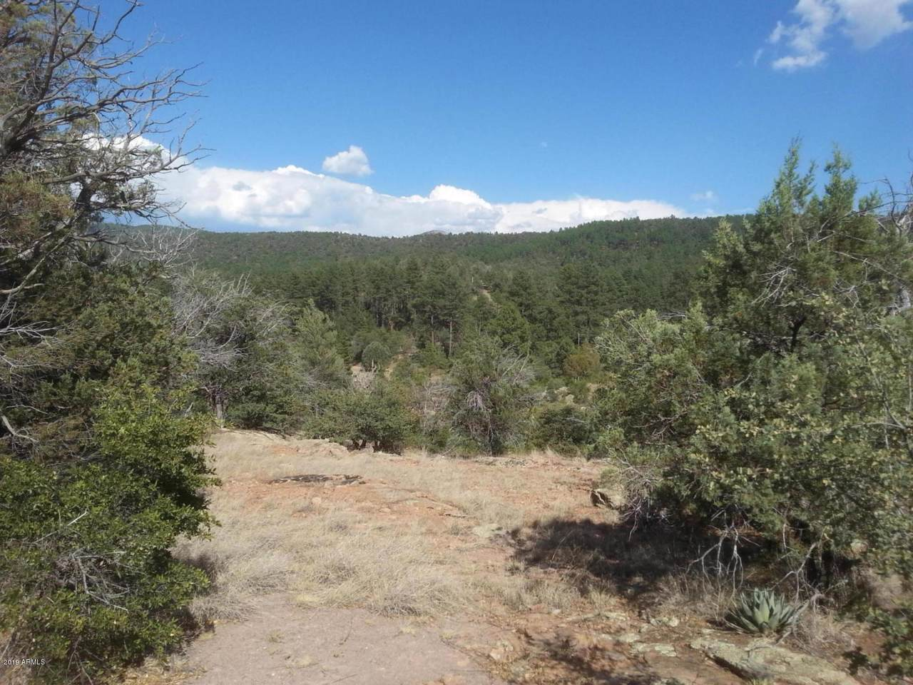 13 Elk Song Trail - Photo 1