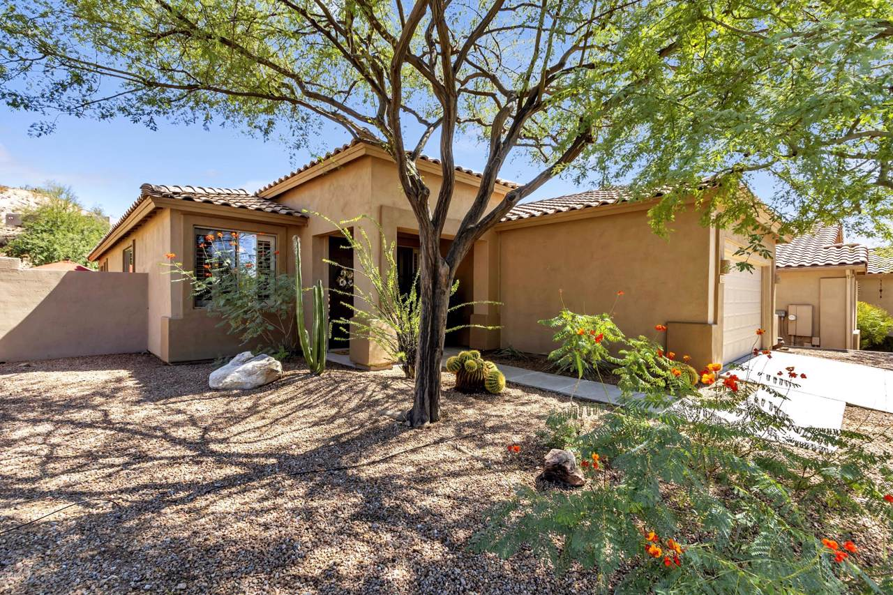 9815 Desert Rose Drive - Photo 1