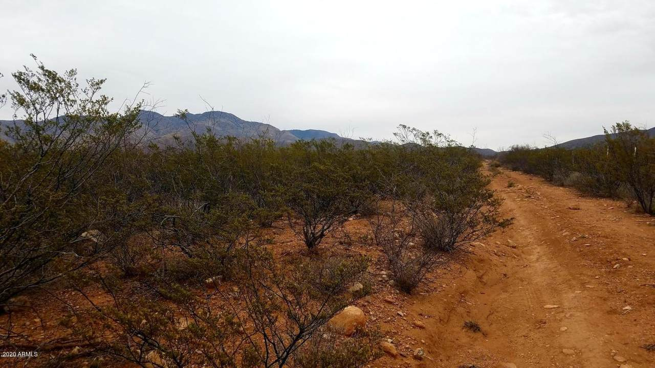 TBD Red Mountain Road - Photo 1