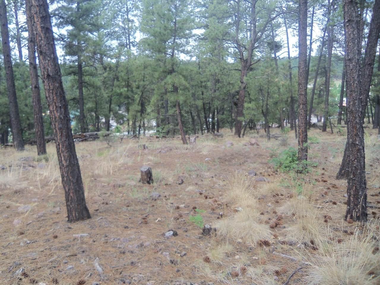 1140 Cactus Wren Circle - Photo 1
