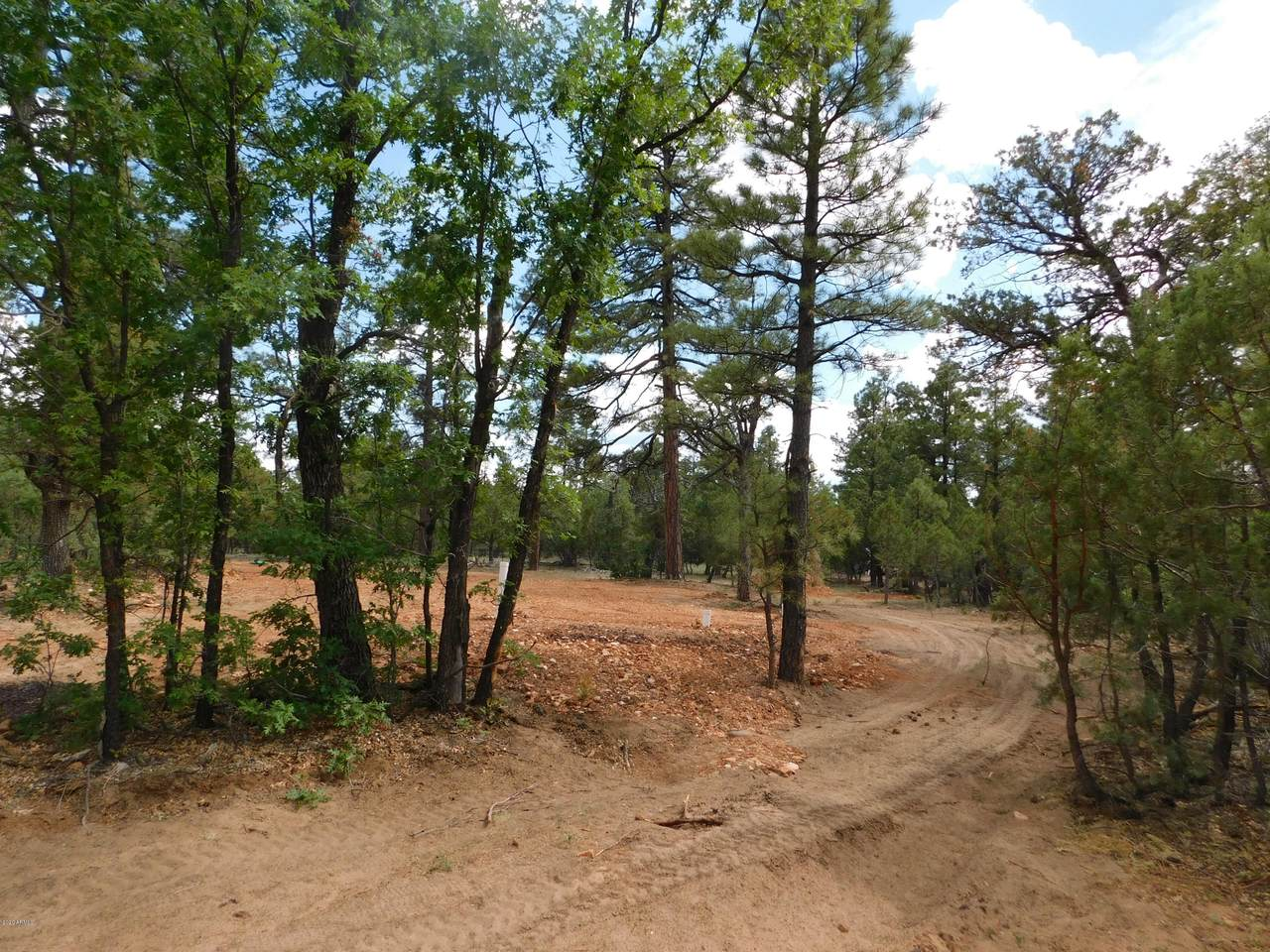 2019 Judy Ranch Road - Photo 1